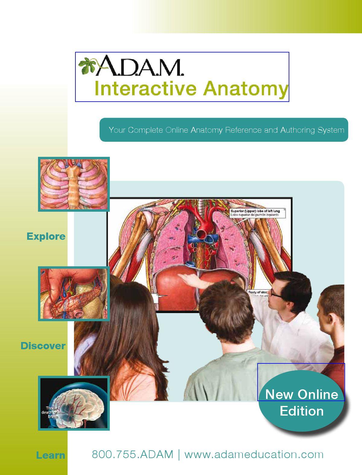 Ziemlich Adam Interaktive Online Anatomie Fotos Menschliche
