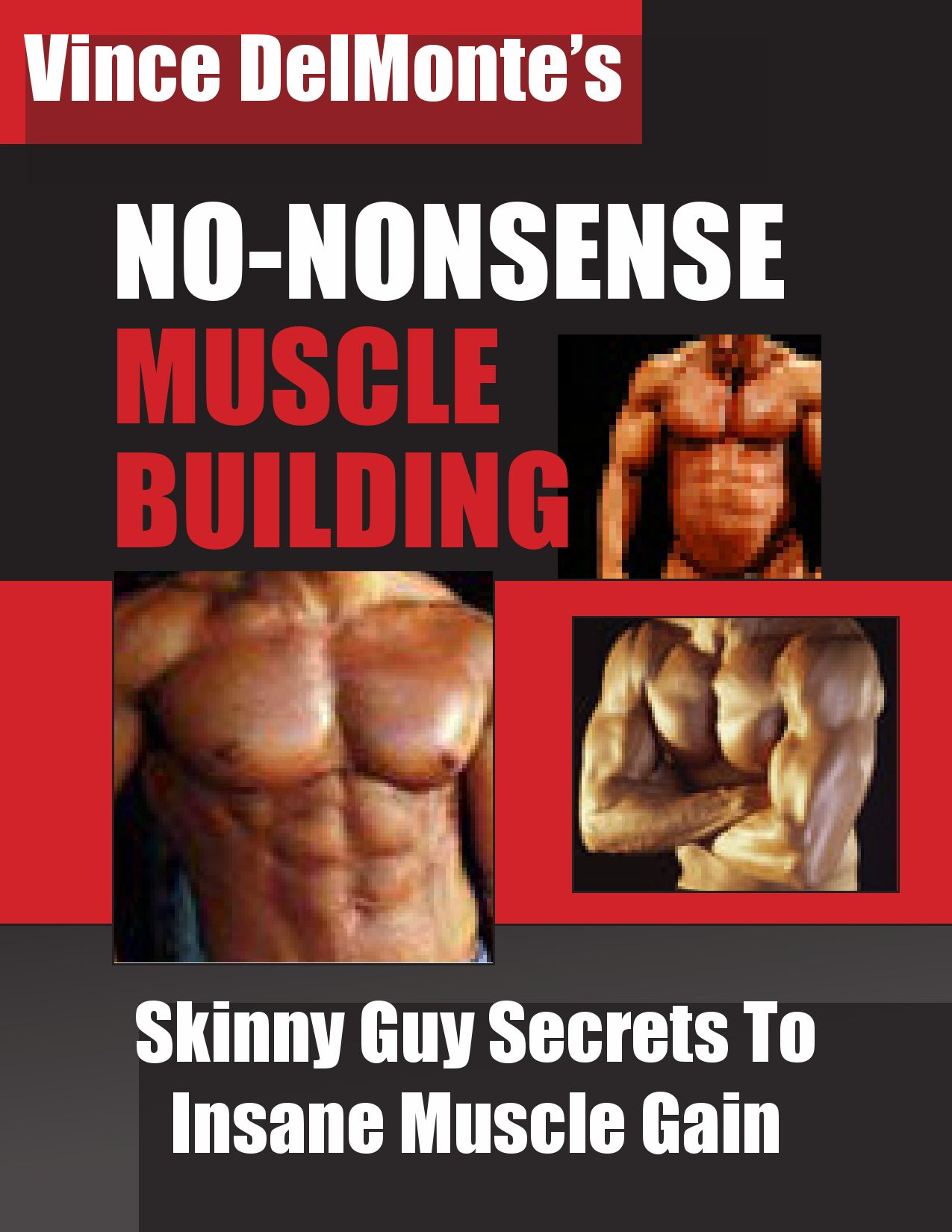 Vince Delmonte No Nonsense Muscle Building