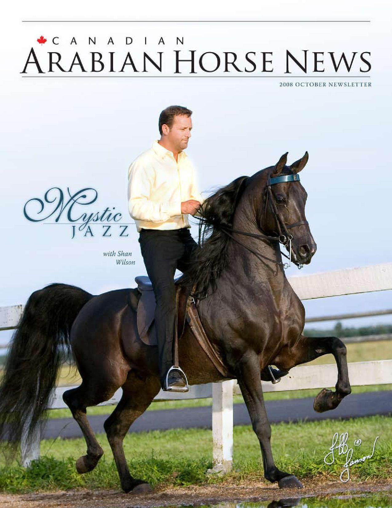 October 2008 By Canadian Arabian News Issuu