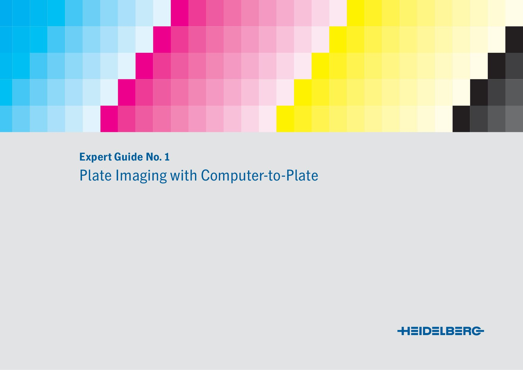 Expert Guide Computer To Plate (CtP) by WPC
