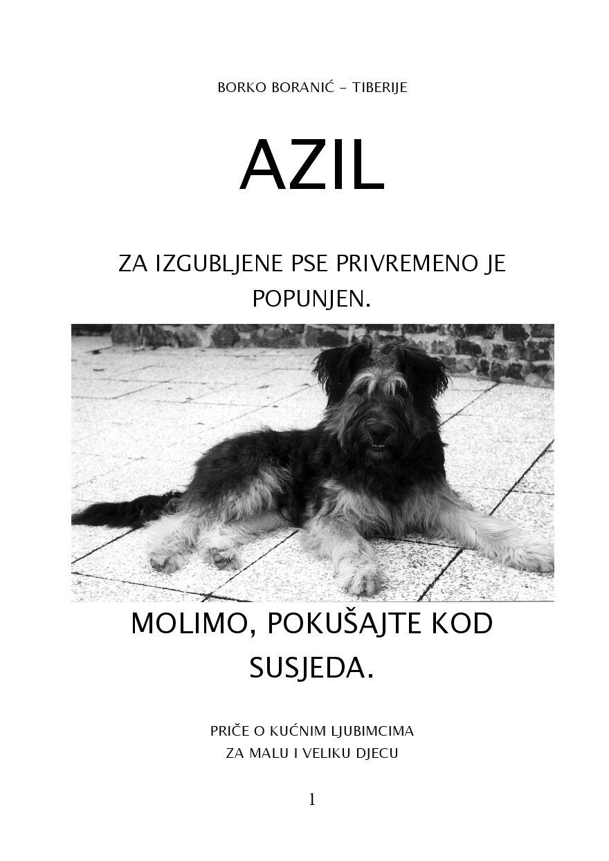 kondicional ugljen smiješan  Azil by Borko Boranic - issuu