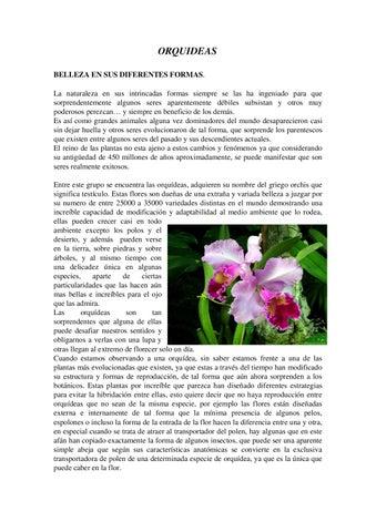 Especies de Orquideas by Eliana Gamarra - issuu