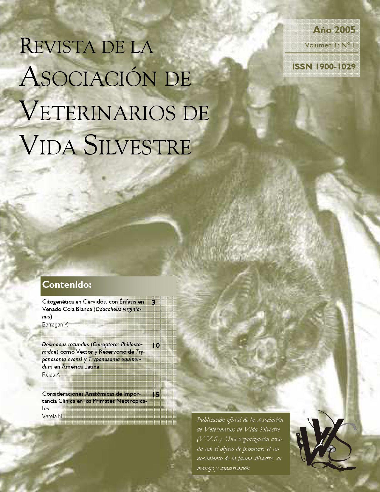 Rev. Aso. Vet. Vida Silv. 2005, 1: 1 by Veterinarios de Vida ...
