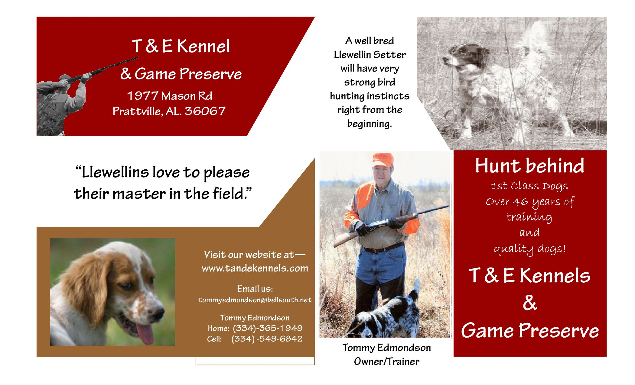 T and E Kennels Brochure by Cassie Patterson - issuu