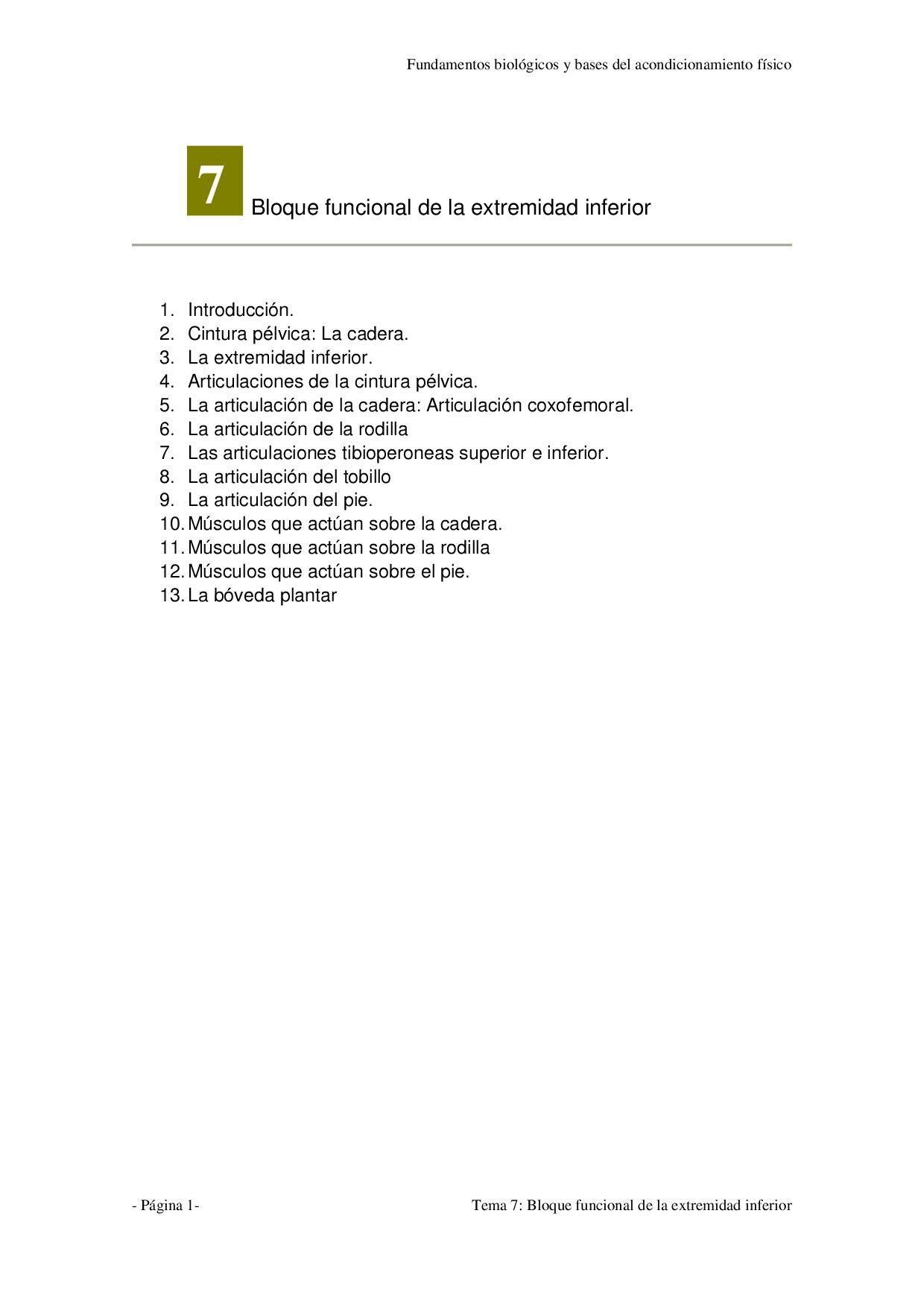 Tema 7 - Bloque funcional de la extremidad inferior by Marcos ...