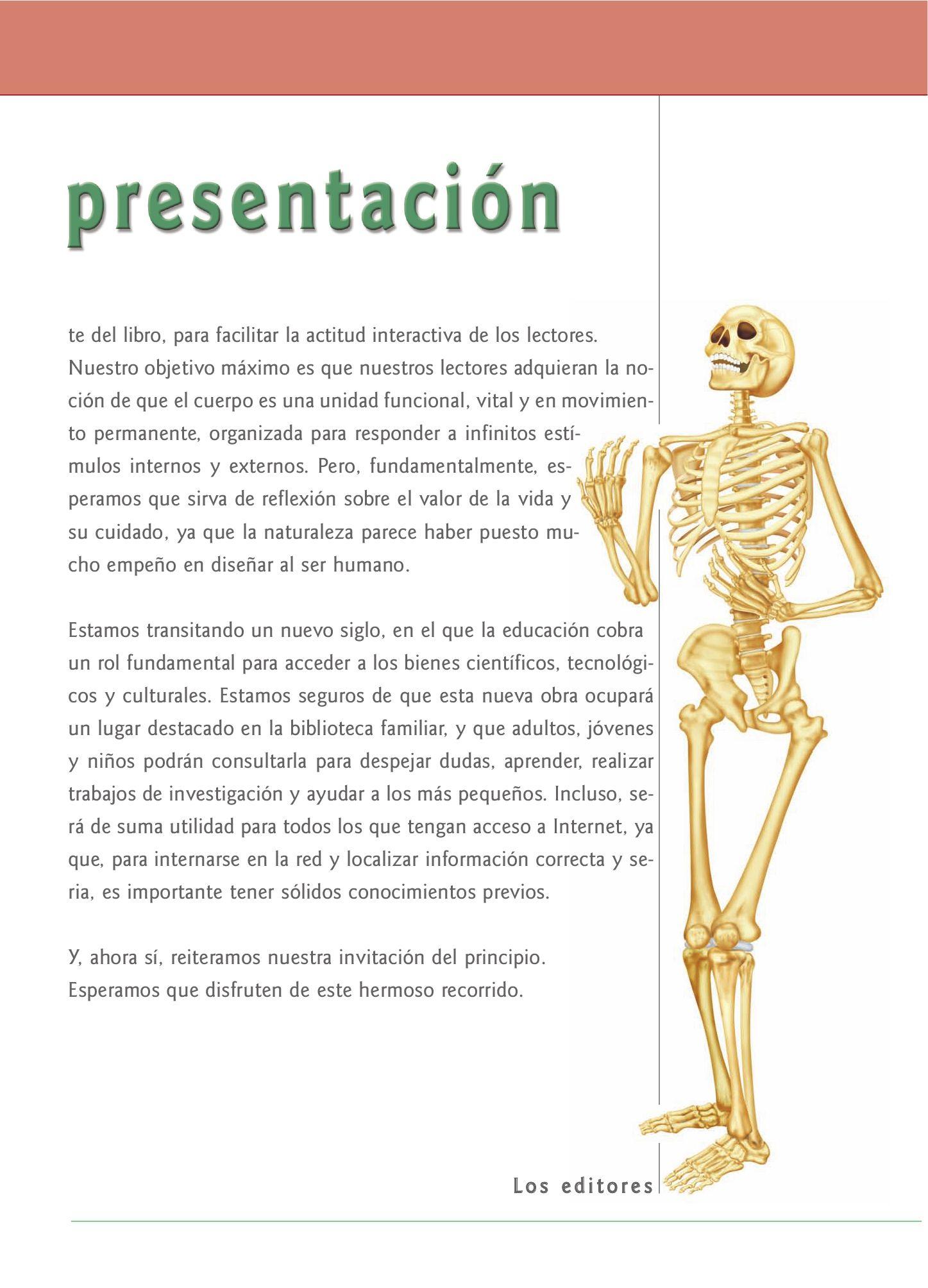 Único Anatomía Y Fisiología Interactivo Ornamento - Imágenes de ...
