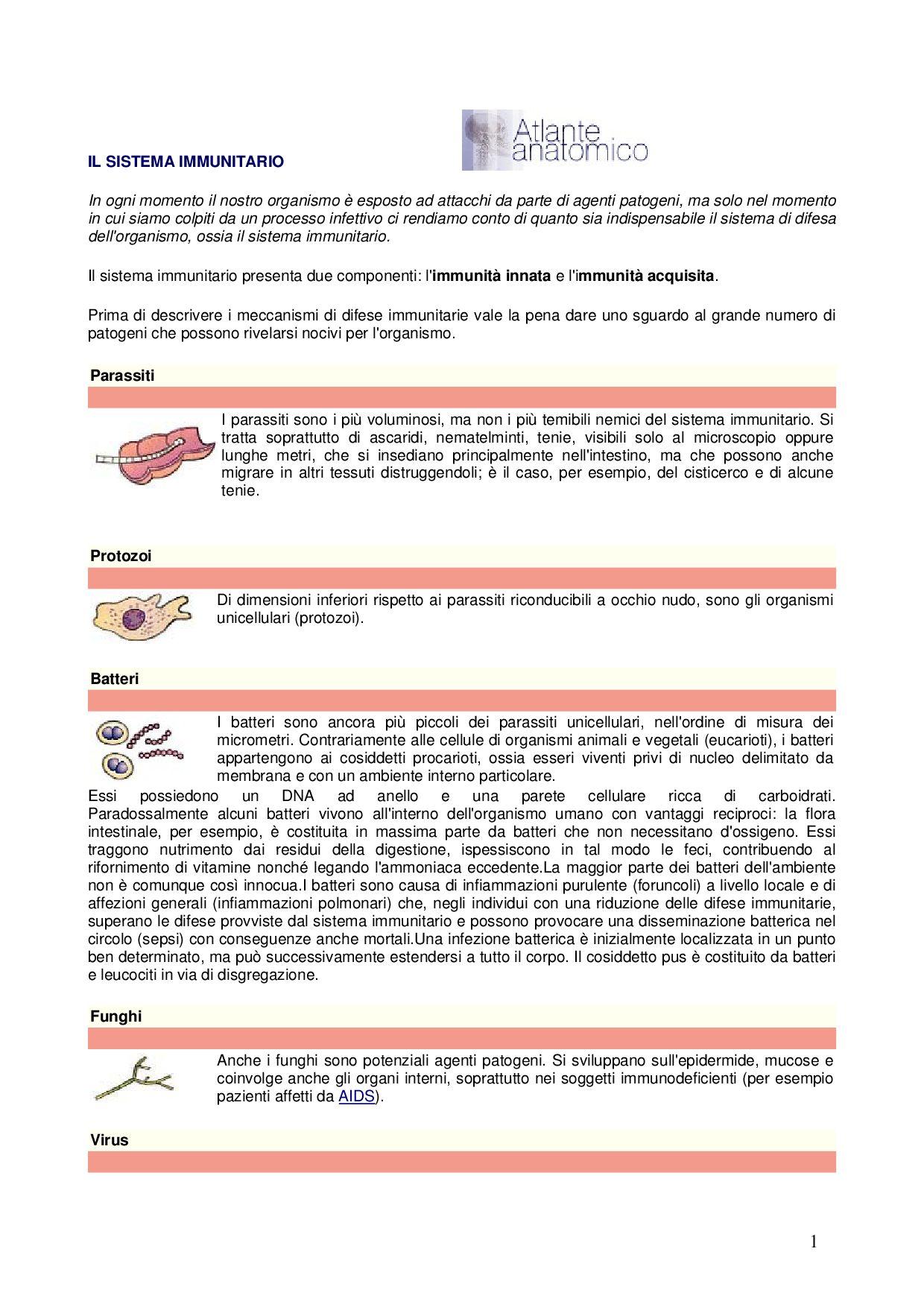 quale dei seguenti parassiti infetta il sistema linfatico