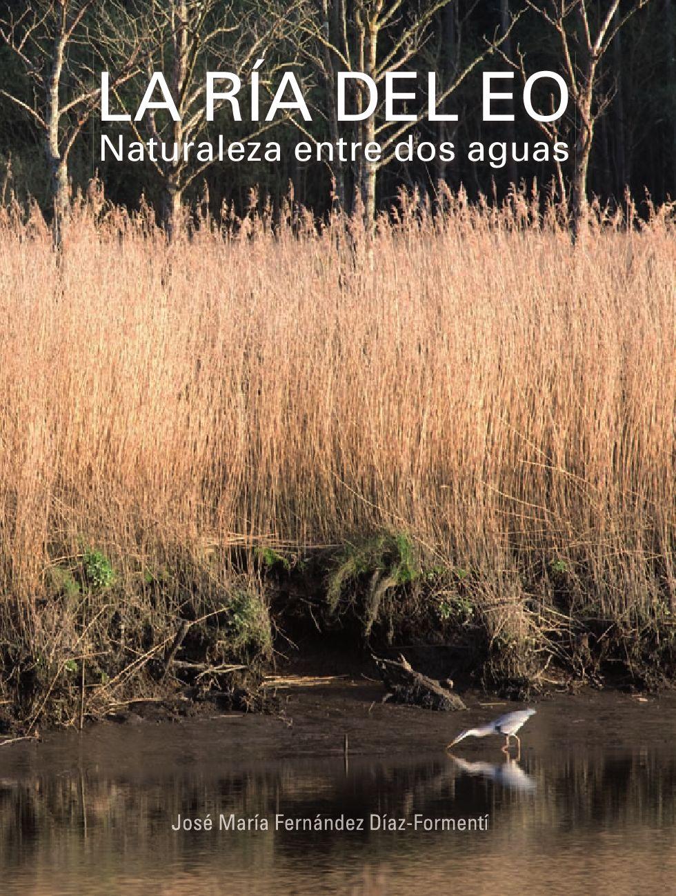 Anas clypeata reproduccion asexual de las plantas