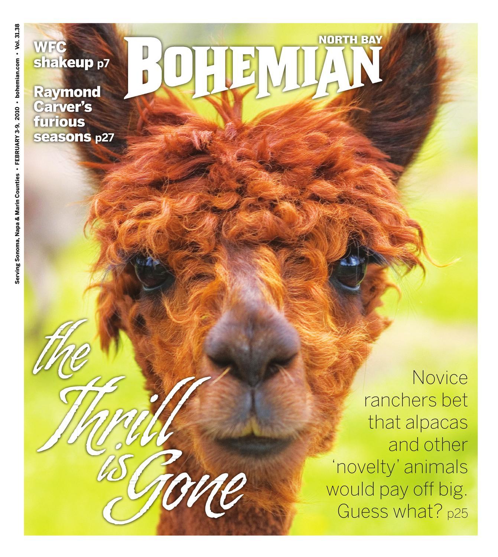 "Alpaca Crossing Sign Zone Xing 12/"" animals farm llama fur raising ranch lover"