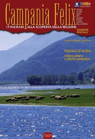 La Risorsa Acqua In Campania By Alfio Giannotti Issuu