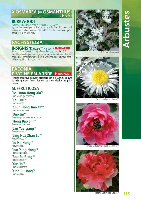 le botanique catalogue de kerisnel les p233pini232res by