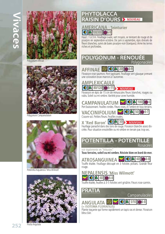 Arbuste Terrain Sec Ombre le botanique, catalogue de kerisnel les pépinières