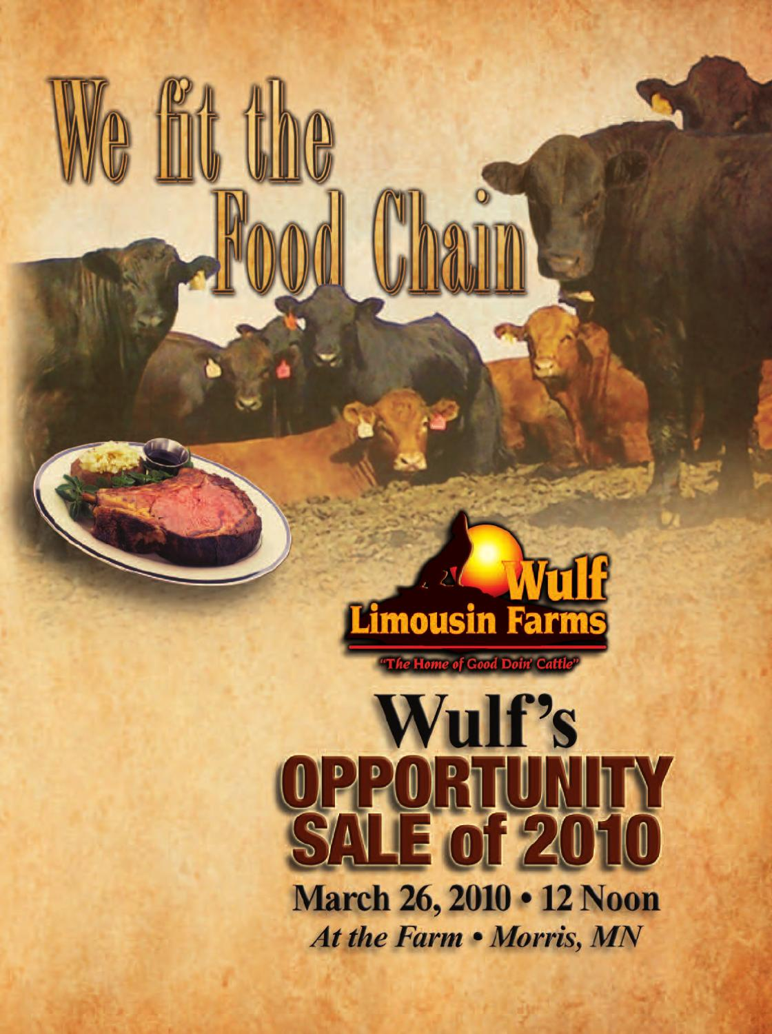 Mature nl philana Wulf Limousin Opportunity Sale Of 2010 By Limousinlive Issuu