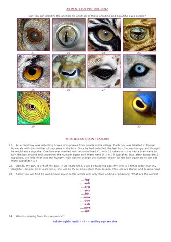 Animal Eyes Picture Quiz by Quincy's Cafe and Restaurant