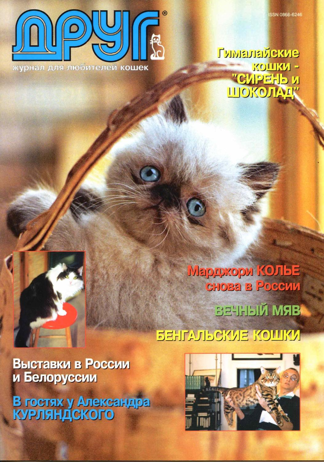 Клуб кошек лой москва ночные клубы г калининграда