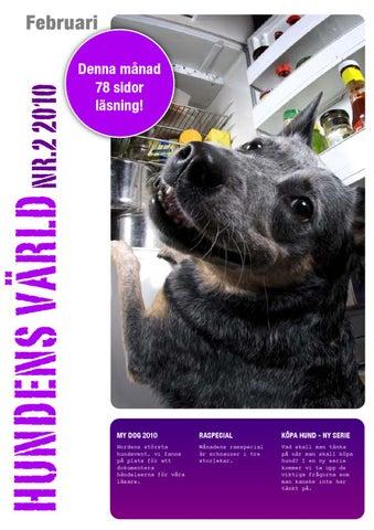 Rinner Saliv Ur Hundens Mun