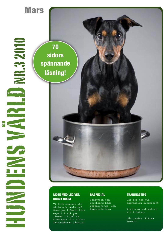 HundensVarld nr3 2010 by Hundens Värld - issuu 37fd049d7ece6