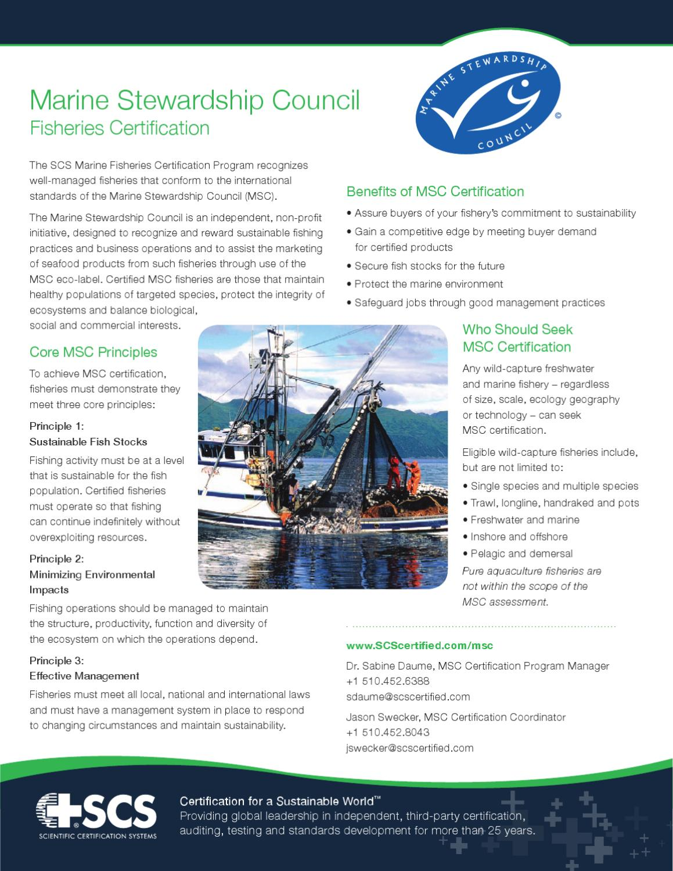 Marine stewardship council brochures by randall beren issuu xflitez Choice Image