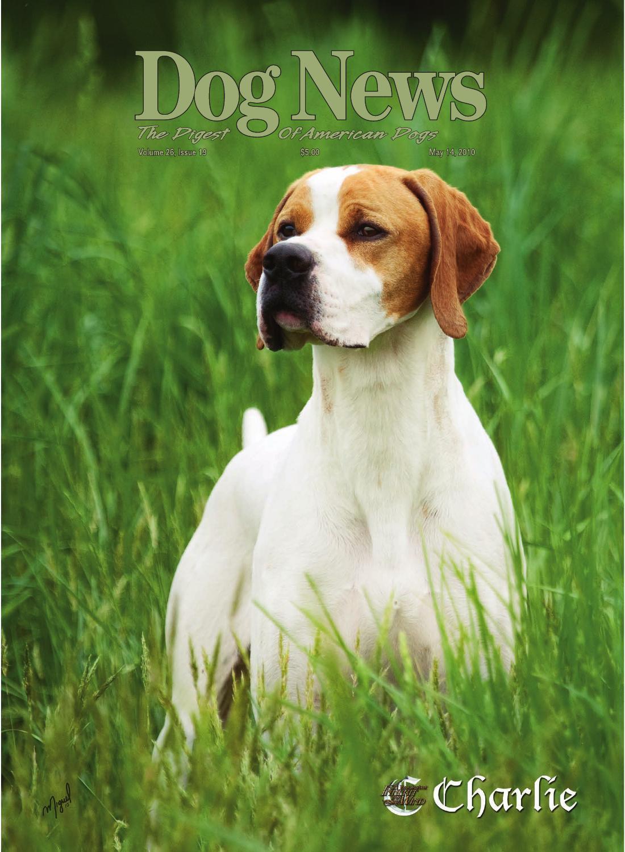 Dog News May 14 2010 By Dog News Issuu