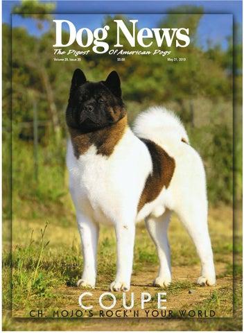 98ee82bc8b2b Dog News