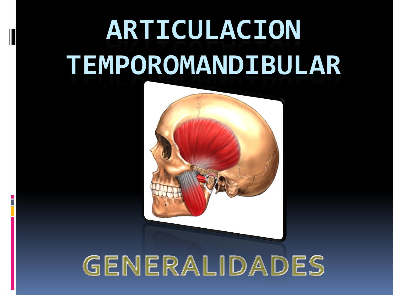ARTICULACION TEMPOROMANDIBULAR GENERALIDADES Y SISTEMA ARTICULAR by ...