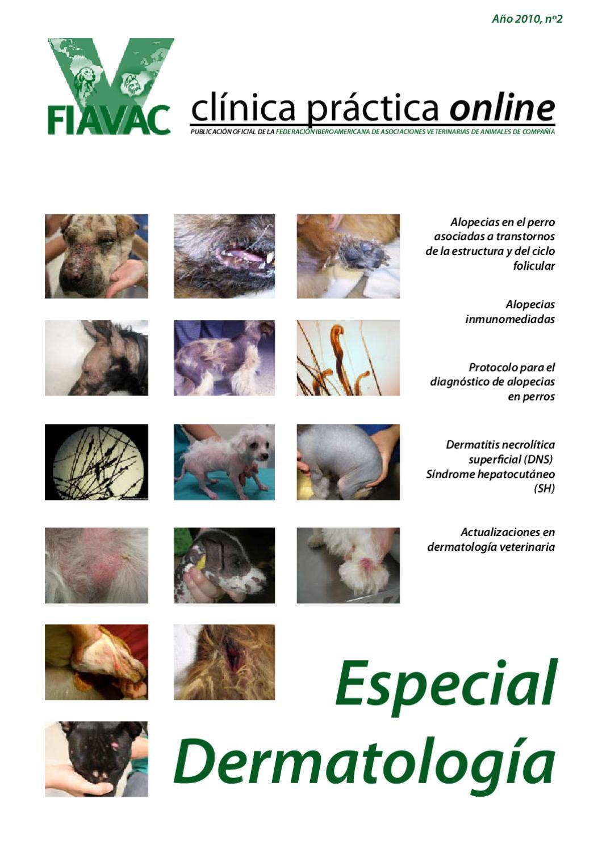 FIAVAC - Clínica Práctica online - número 2 - Especial Dermatología ...
