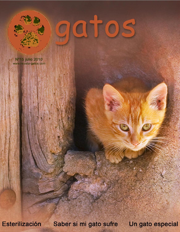 Revista Gatos N 15 by Revista Gatos - issuu