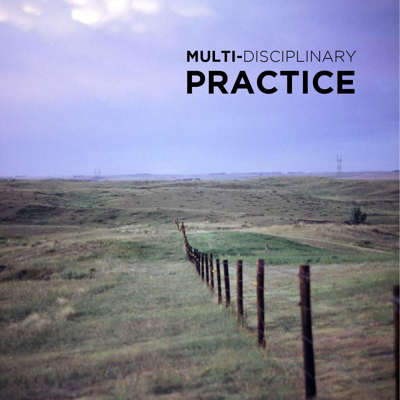 Discipline Practices Erect Detours For >> Multi Disciplinary Practice By William Carpenter Issuu