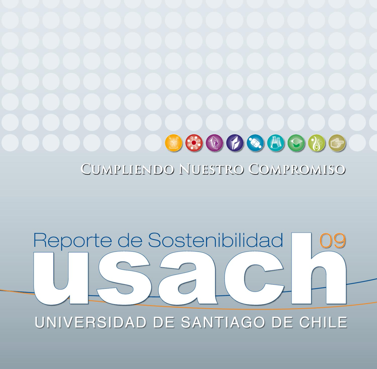RSE USACH 2009 by Cesar Escarate - issuu