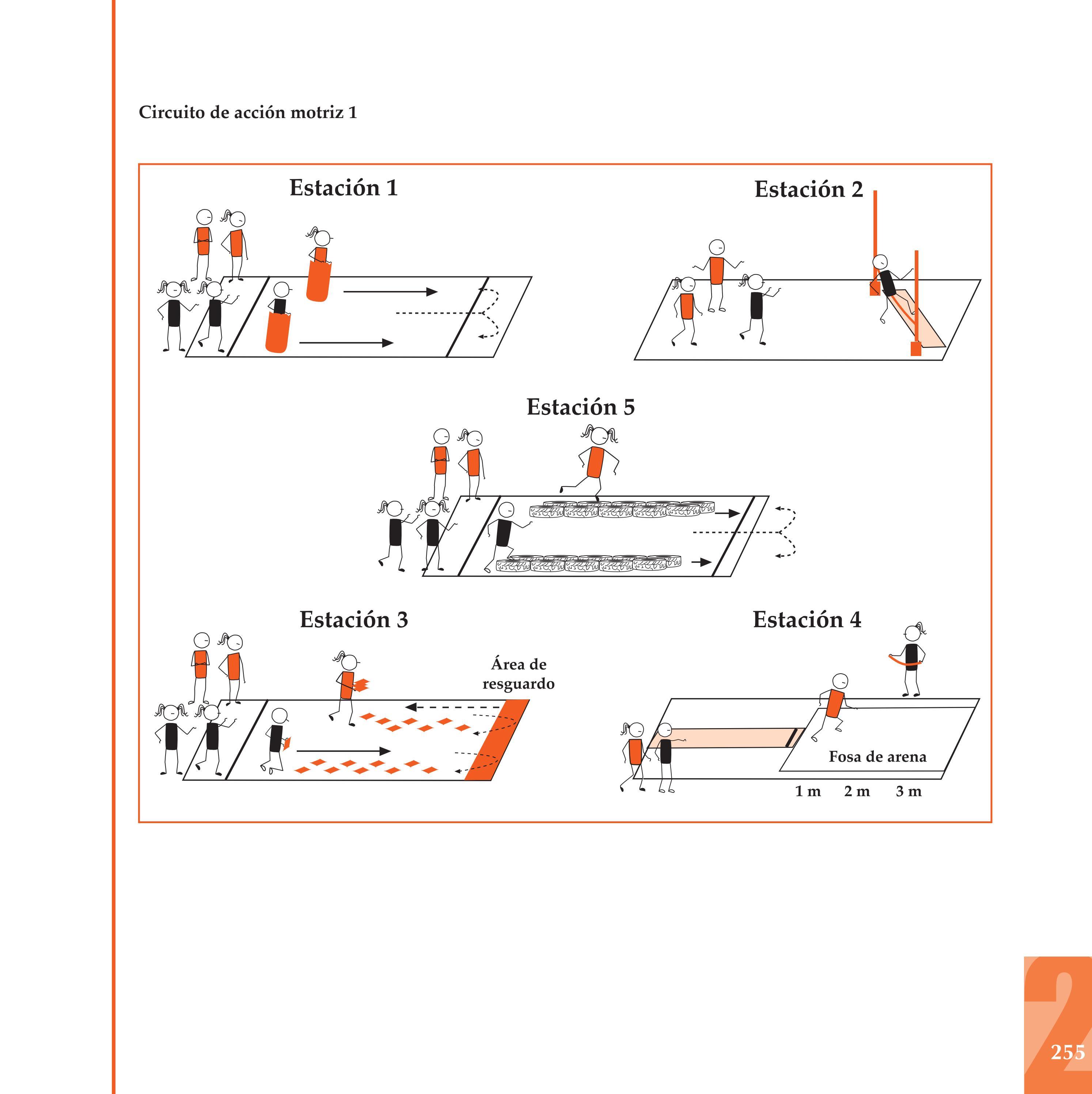 Circuito Motriz : Programa de educación física para secundaria by ivette