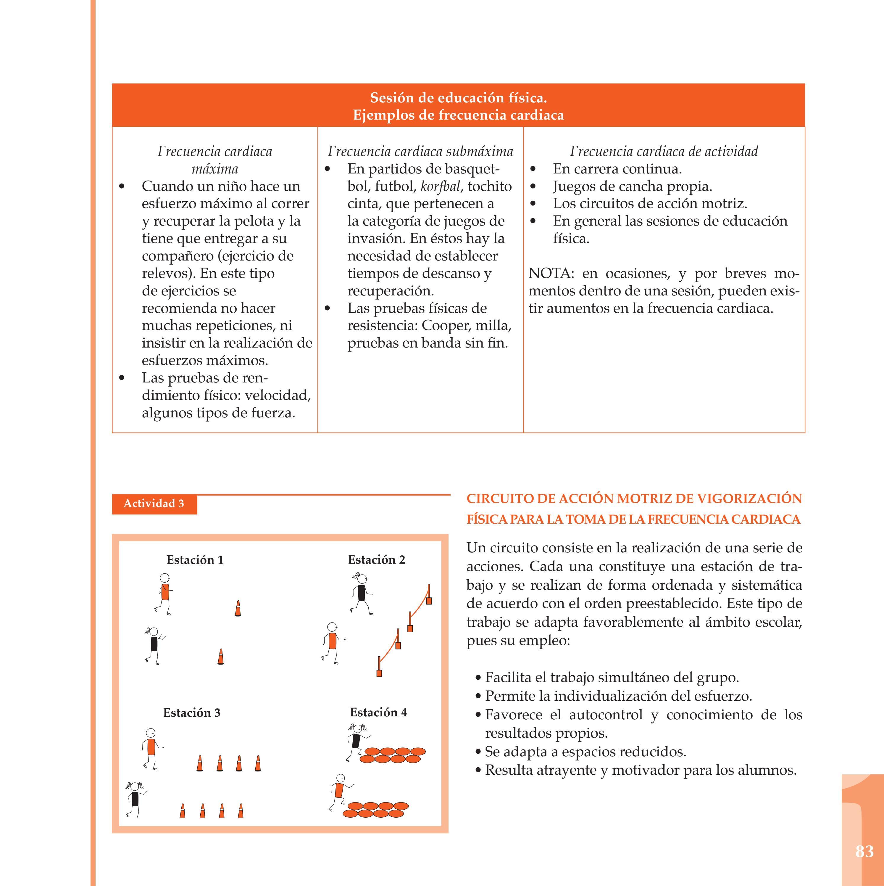 Circuito De Accion Motriz : Programa de educación física para secundaria by ivette