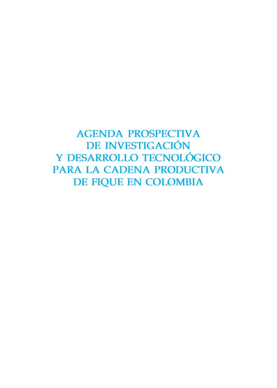 81420b8d0c05 Agenda prospectiva de investigación y desarrollo tecnológico para la cadena  productiva de Fique by Grupo de Investigación y Desarrollo en Gestión
