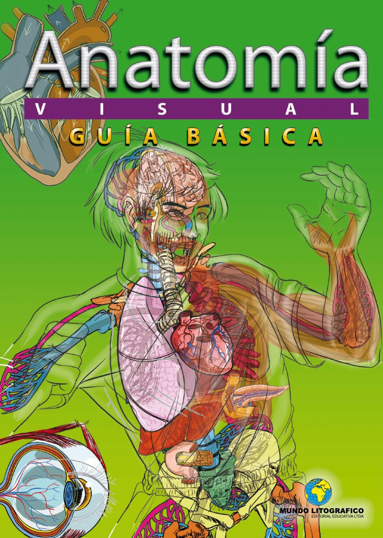 Atlas de anatomia humana 96p by Danny Romero - issuu