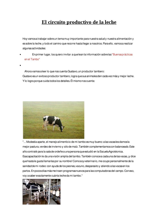 Circuito De La Leche : El circuito productivo de la leche by mariana iec issuu