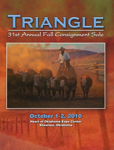 a4374980c 2010 Triangle Fall Consignment Sale by Triangle Horse Sales - issuu