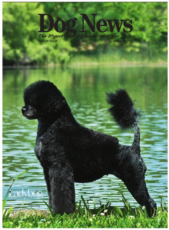 Dog News, September 24, 2010 by Dog News - issuu