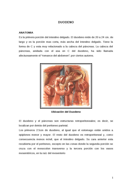 Estudi Radiologico del Intestino delgado Monografia by elias Aguilar ...