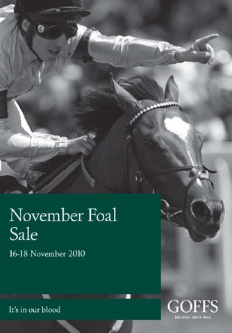 04443791a24bd Goffs 2010 November Foal Sale Part 1 by Goffs - issuu