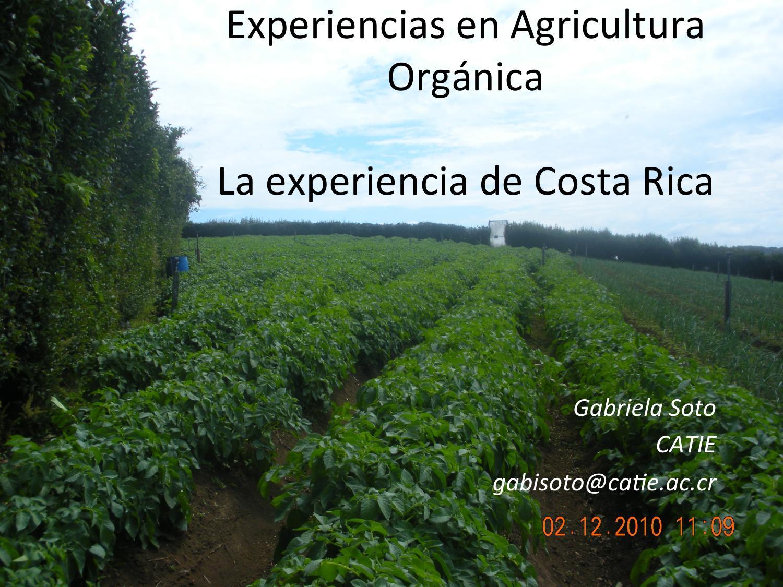 Experiencias En Agricultura Orgánica By Biblioteca Eea Issuu