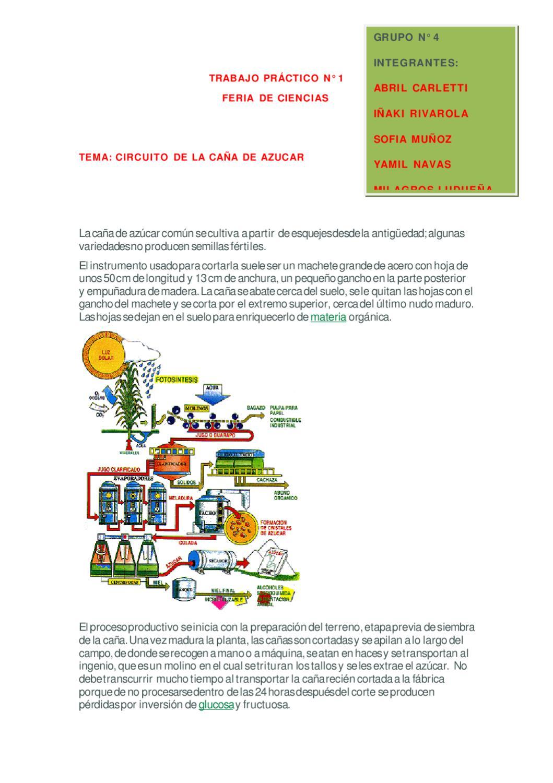 Circuito Productivo De La Caña De Azucar : Circuito productivo de la caÑa azucar by andrea cabrera