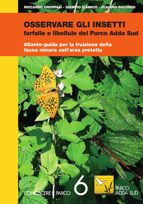 Allontanare Lucertole Dal Terrazzo farfalle e libellule nel parco adda sud by galeatica - issuu