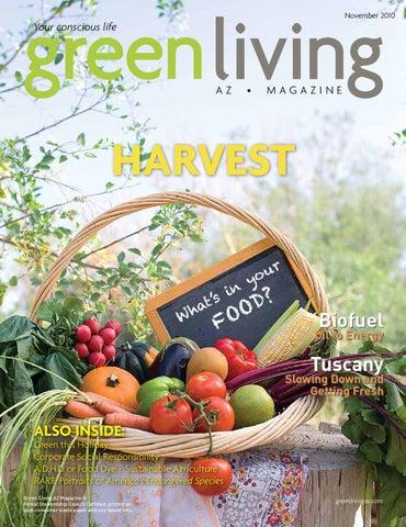 Green Living November 2010 By AZ Magazine