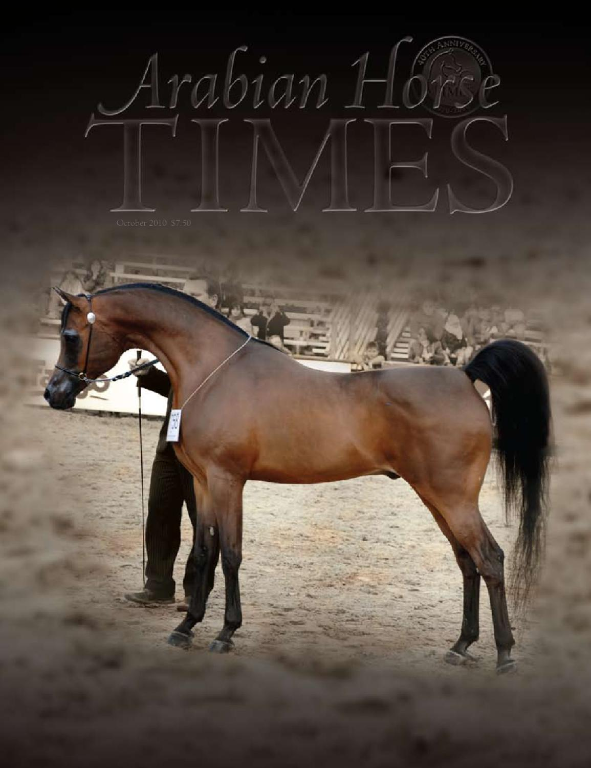 Arabian Horse Times October 2010 By Arabian Horse Times Issuu
