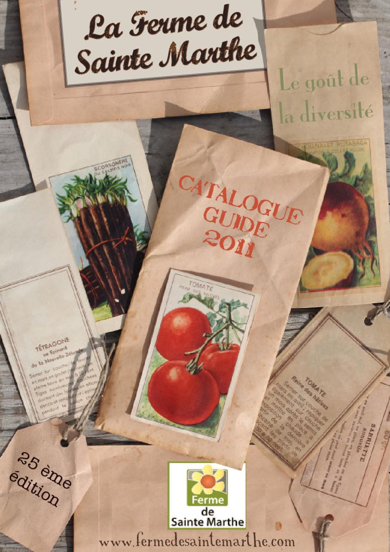 Lot de 100 attaches Pour tomates poivrons vignes concombres Corde Treillis