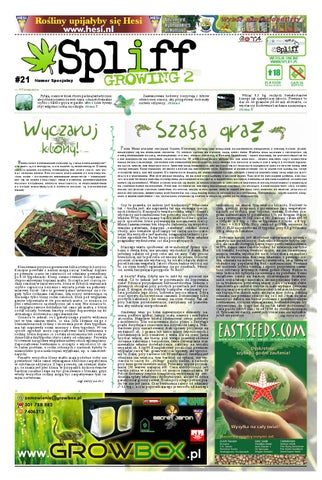 21 Gazeta Konopna Spliff By Spliff Gazeta Konopna Issuu
