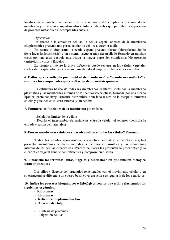 Actividades Resueltas 1º Bachillerato 1ª Ev By Ies Sánchez