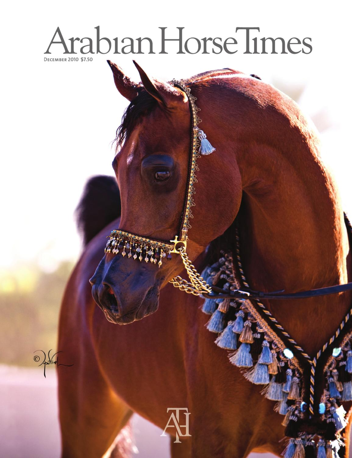Arabian Horse Times December 2010 By Arabian Horse Times Issuu