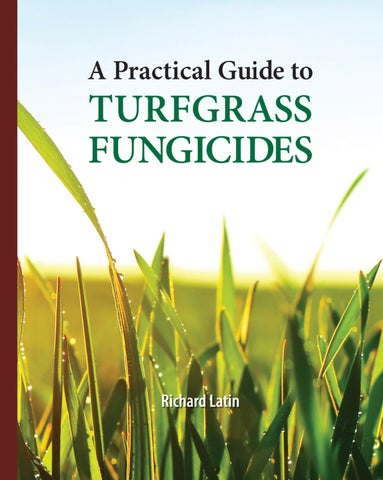 Fungicide Chemistry. Advances and Practical Applications
