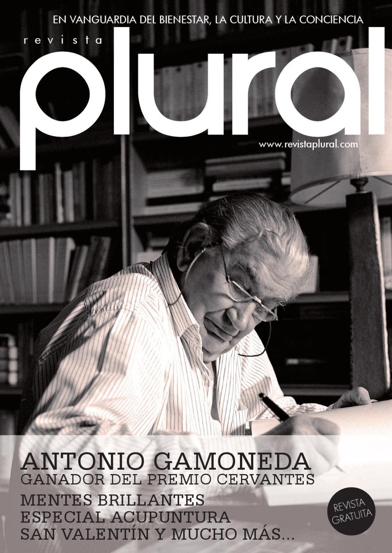 Revista Plural nº19 by Editorial Epimelia - issuu