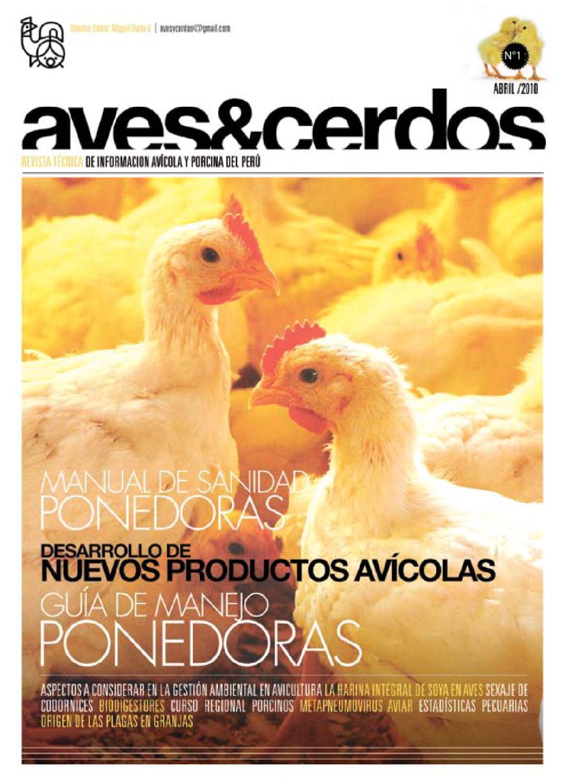 Aves y cerdos by Miguel Viaña - issuu
